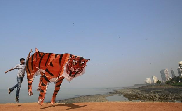 Tigre também foi uma das figuras escolhidas para tomar forma de pipa (Foto: Rafiq Maqbool/AP)