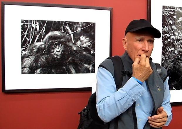 Sebastião Salgado mostra como gorila se comportou diante de sua câmera ao perceber seu próprio reflexo (Foto: Fábio Tito/G1)