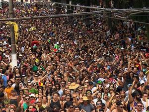 Refrão conhecido entre os foliões agitou o carnaval em Tremembé (Foto: Reprodução/TV Vanguarda)