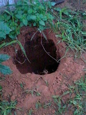 Saída do túnel, já do lado de fora da penitenciária, foi descoberta na manhã desta terça-feira  (Foto: Divulgação/PM)