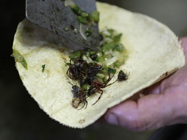 O chef de cozinha Ernesto Martinez prepara um taco com aranhas no restaurante La Cocinita de San Juan (Foto: REUTERS/Henry Romero)