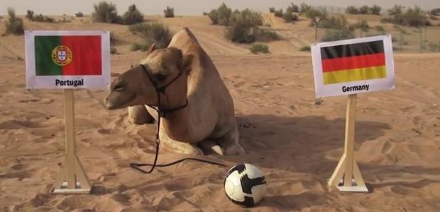 Camelo faz previsões para a Copa do Mundo e aposta na vitória de Portugal contra a Alemanha (Foto: Reprodução / Youtube)