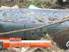 Prefeitura multa mais de 400 terrenos por falta de capina ou entulho