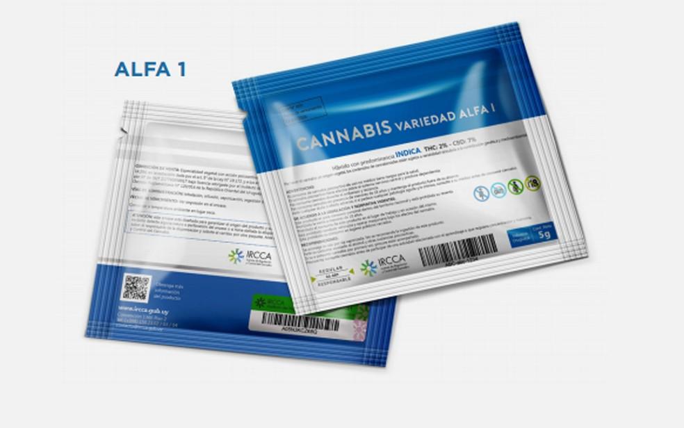 Tipo de embalagem de maconha a ser vendida em farmácias do Uruguai (Foto: Divulgação/IRCCA)