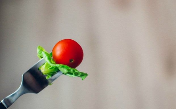 Estudo sugere que dieta peridica que simula jejum tem benefcios a longo prazo para a sade  (Foto: Reproduo / tookapic)