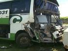 Acidente entre ônibus e caminhão deixa 11 feridos em São Simão, SP