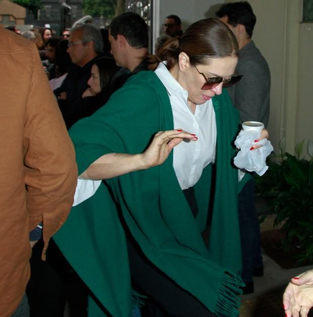 Claudia Raia (Foto: Amauri Nehn/Brazil News)