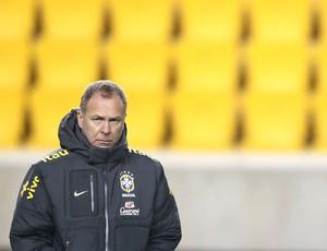 Mano Menezes, treino seleção Brasileira (Foto: Mowa Press)