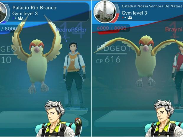 Catedral e Palácio são ginásios para batalhas Pokémon  (Foto: Reprodução/PokemonGO)