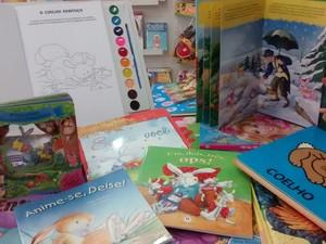Livros infantis são opções de presente para quem quer fugir do tradicional (Foto: Cristiane Mendes/G1)