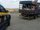 PRF intensifica fiscalização nas estradas na Operação Romarias em SE