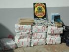 Polícia apreende medicamentos e maconha na rodoviária de Cascavel