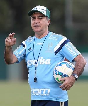 Marcelo Oliveira Palmeiras (Foto: Cesar Greco/Ag Palmeiras/Divulgação)