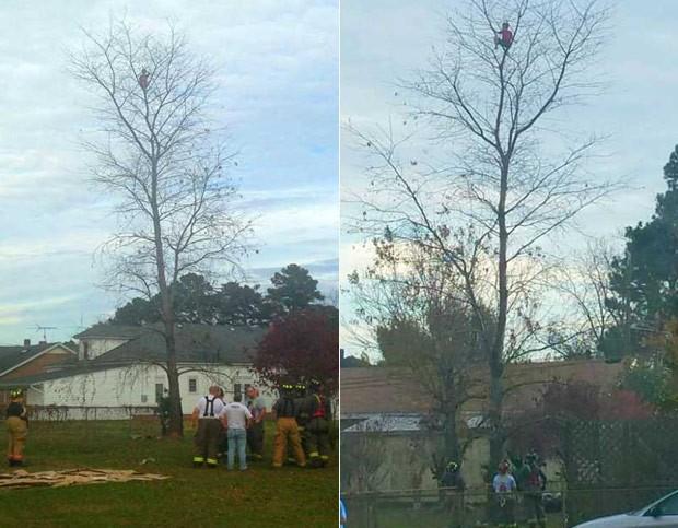 Menino de seis anos foi resgatado após subir no topo de árvore e não conseguir descer (Foto: Reprodução/Facebook/Faison Fire and Rescue)