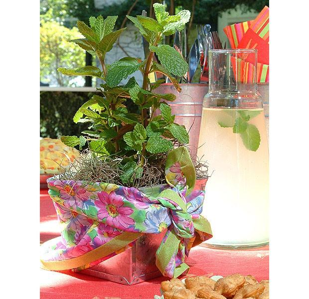 O vasinho com ervas vai até para a mesa. Aqui, ele está embrulhado com um pedaço de tecido para dar bossa (Foto: Cláudio Pinheiro/Editora Globo)