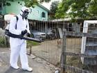 Porto Alegre aplica inseticida por suspeita de zika vírus e chikungunya