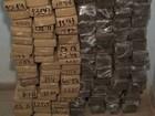 Carga apreendida de 150 Kg de maconha iria para Salvador, diz polícia