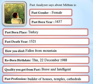 Past Life Analyzer