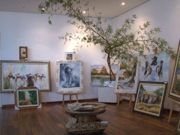 Exposição segue até o próximo sábado em Vilhena (Foto: Reprodução/Rede Amazônica RO)