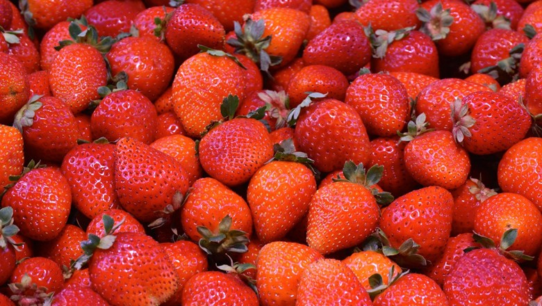 morango-alimentos-mercado (Foto: Pexels)