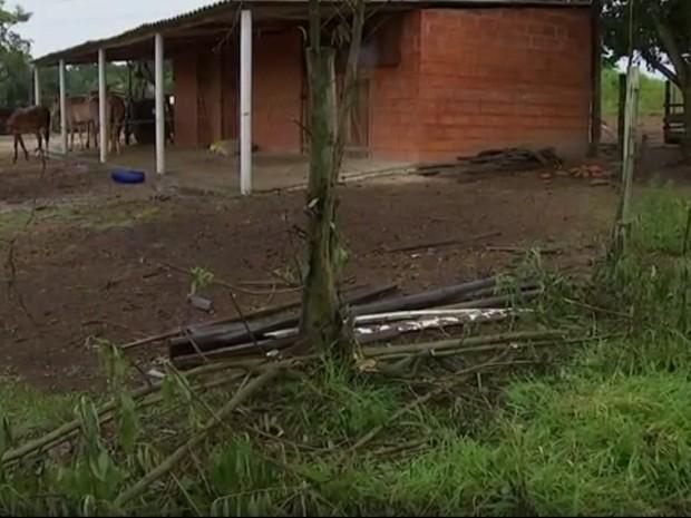 Acidente aconteceu na área rural da cidade (Foto: Repro~dução/TV TEM)
