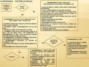 Fluxograma mostra o atendimento oferecido a vítimas de violência sexual (Foto: Reprodução)