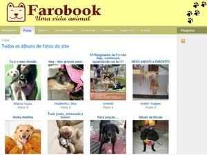 Página exibe fotos de diversos animais de estimação (Foto: Reprodução)