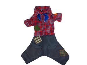G1 - Costureira confecciona roupas de Festa Junina para cães em ... dc14f4368f2