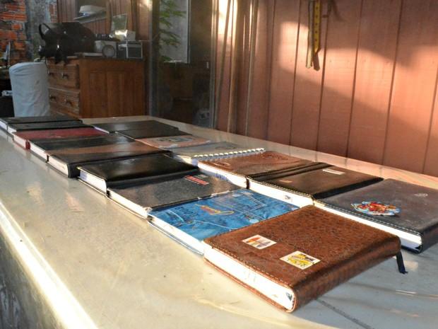 Desde 2000 ela mantém diários para guardar memórias (Foto: Anny Barbosa/G1)