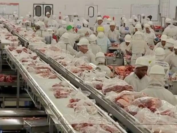 Preço médio da arroba do boi pago pelos frigoríficos em MS foi de R$ 138,87 entre 10 e 24 de março (Foto: Reprodução/TV Morena)