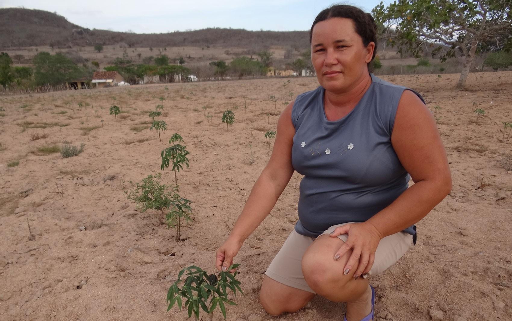 Maria Alexandre da Silva perdeu mandioca que plantou em janeiro, em Bezerros. (Foto: Luna Markman/ G1)
