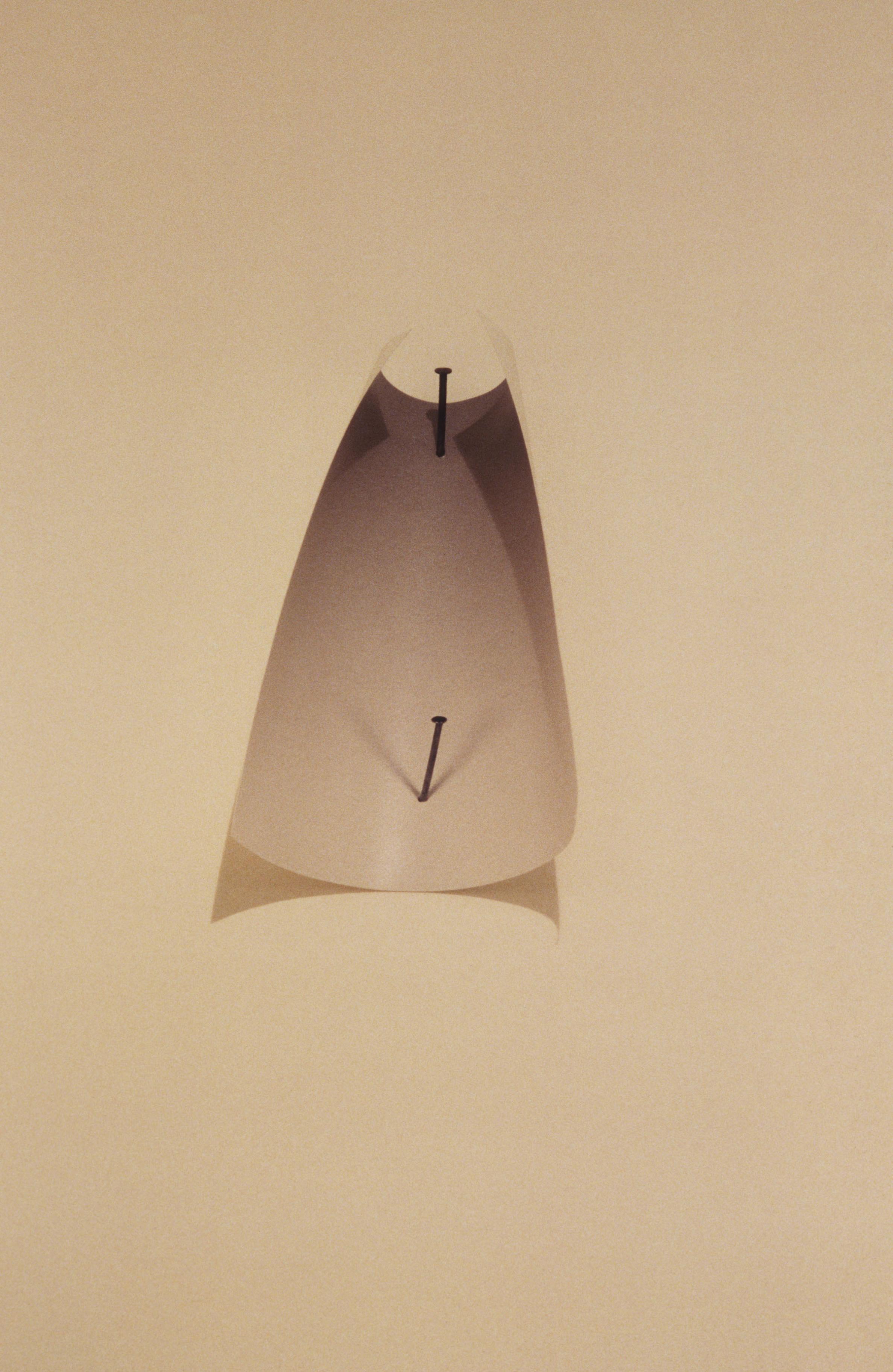 Obra de arte 'Two Nails' (Foto: Cortesia de Vik Muniz e galeria nara roesler)