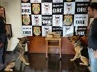 Integrantes de organização criminosa são condenados pela Justiça do DF