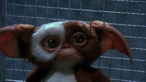 Gizmo correrá risco de vida em Gremlins 3 (Foto: Divulgação)