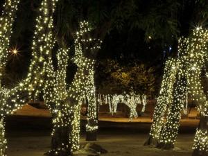 Governo de Roraima decretou ponto facultativo (Foto: Victor Mattioni/Arquivo pessoal)