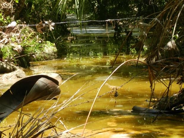 Água de córrego foi a primeira a ficar contaminada com óleo diesel (Foto: Bruno Bortolozo/ Centro América FM)