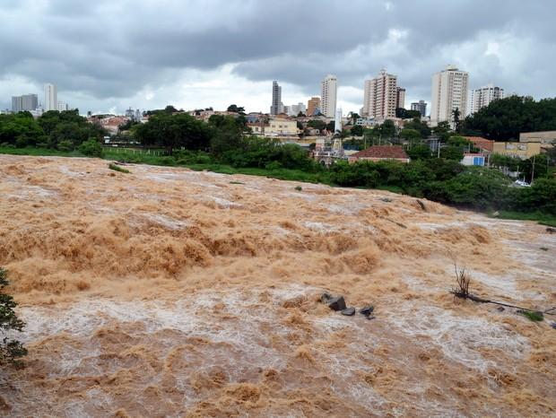 Rio Piracicaba registrou 267 mil litros de água por segundo neste domingo (22) (Foto: Araripe Castilho/G1)