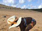 Giovanna Ewbank mostra filha Titi na praia e brinca: 'À milanesa'