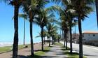 A cidade de Praia Grande faz aniversário! (Cici Senhoretti)