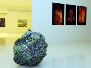 Museu de Arte Contemporânea de campinas abre exposição de seu acervo  (Foto: Luiz Granzotto )