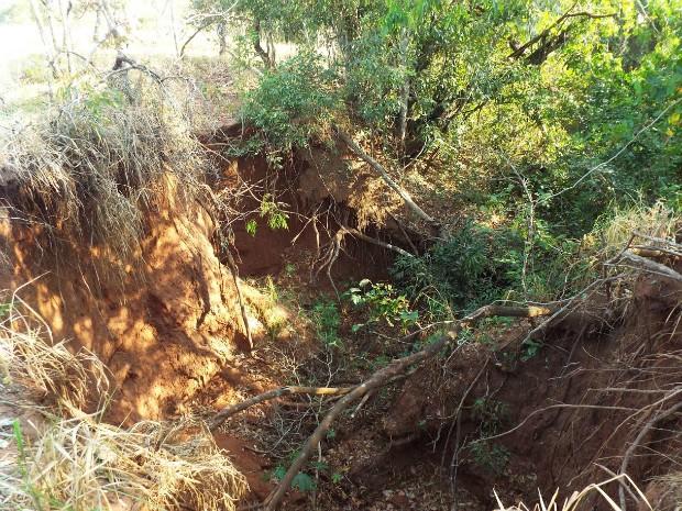 G1 - Fazendeira de MS é multada em R  30 mil por erosão em área de ... 41504a5590