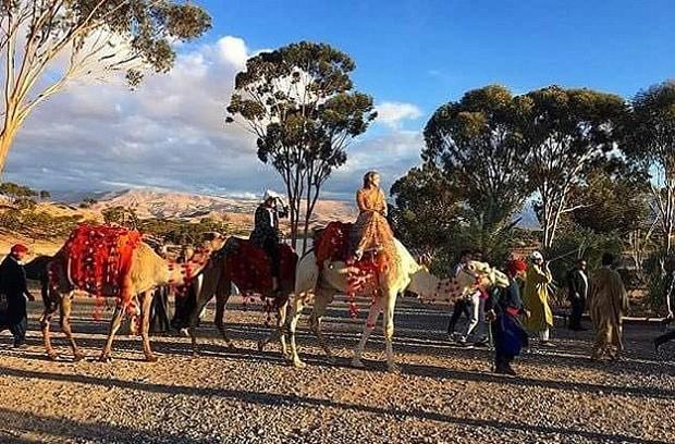 Casamento de Dianna Agron contou até com camelos (Foto: Reprodução/Instagram)