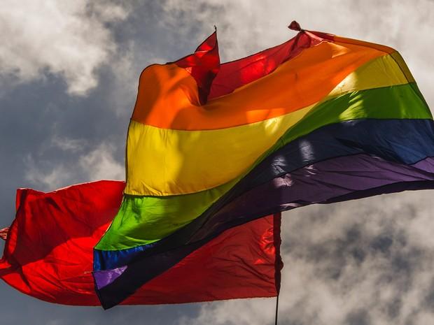 20ª Parada do Orgulho LGBT acontece neste domingo (15) (Foto: Aline Macedo)