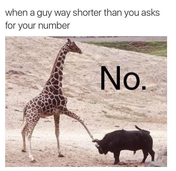 """""""Quando um cara mais baixo que você te convida pra sair"""" (Foto: Instagram/Reprodução)"""