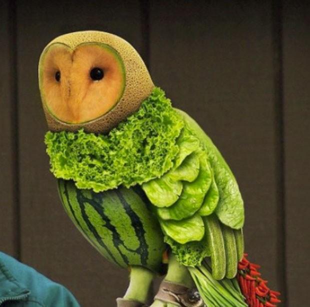 Feira em Harrogate exibiu uma escultura de uma coruja feita com vegetais. (Foto: Reprodução/Site oficial)