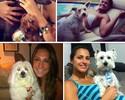 Cachorro, gato... bichos de estimação são os 'melhores amigos' dos atletas