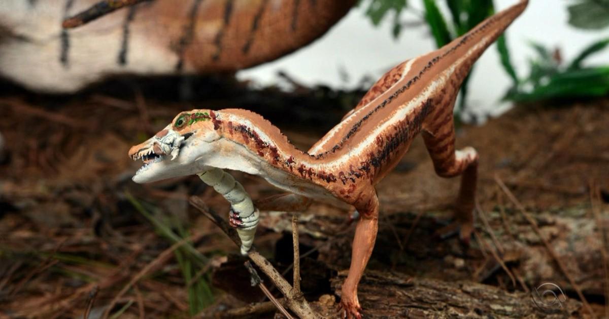 Pesquisadores anunciam descoberta de precursores de dinossauros no RS