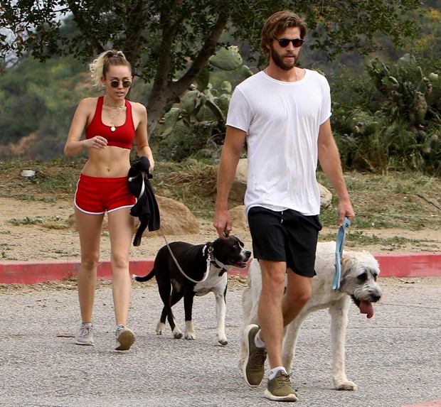 Miley Cyrus e Liam Hemsworth (Foto: AKM-GSI)
