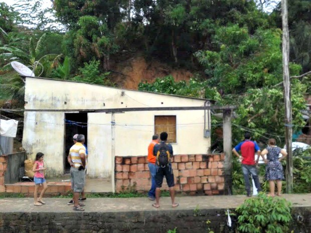 Barranco cedeu e árvore atingiu casa na Cidade Nova  (Foto: Defesa Civil/Divulgação)