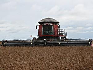 Colheita da soja em Mato Grosso (Foto: Leandro J. Nascimento/G1)